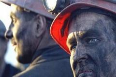 Bosanski džihadisti su vam blizu, a rudari tako daleko